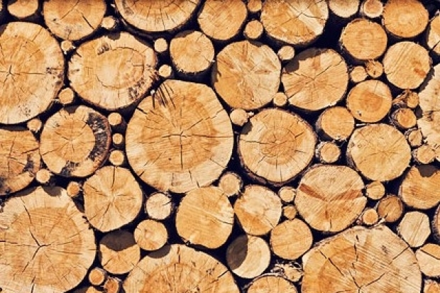 Holzpreise 2020